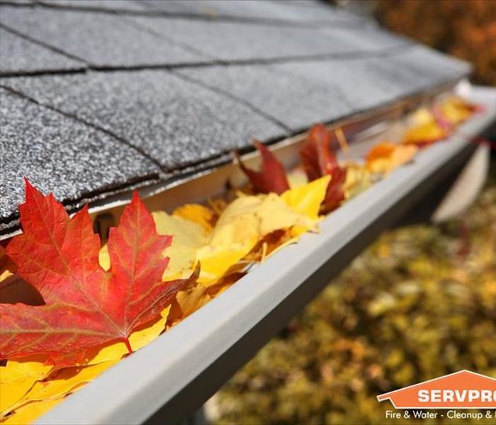 Prepare your home for fall servpro of richmond for Fall home preparation