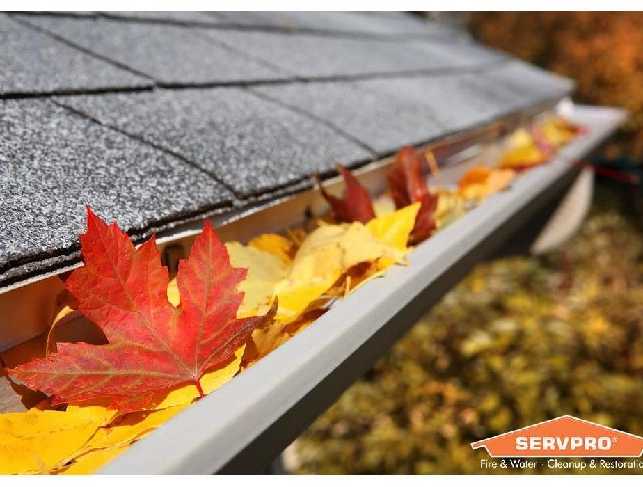 This is a photo of fall leaves collecting in the gutters of a home.