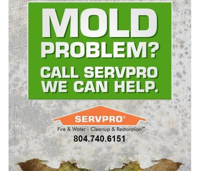 Mold Remediation Moisture Control is Key to Mold Control