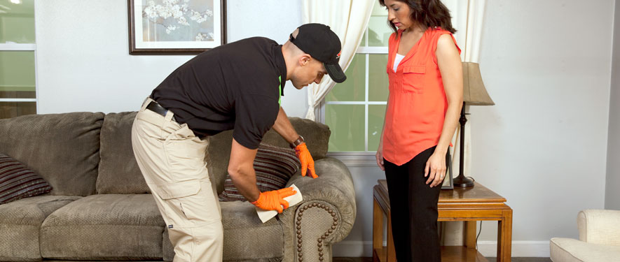Richmond, VA carpet upholstery cleaning